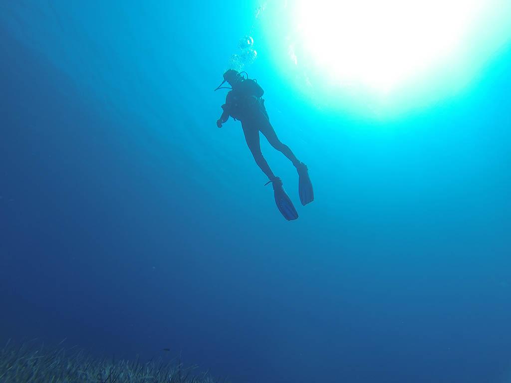 Salty Rides - Go Scuba diving
